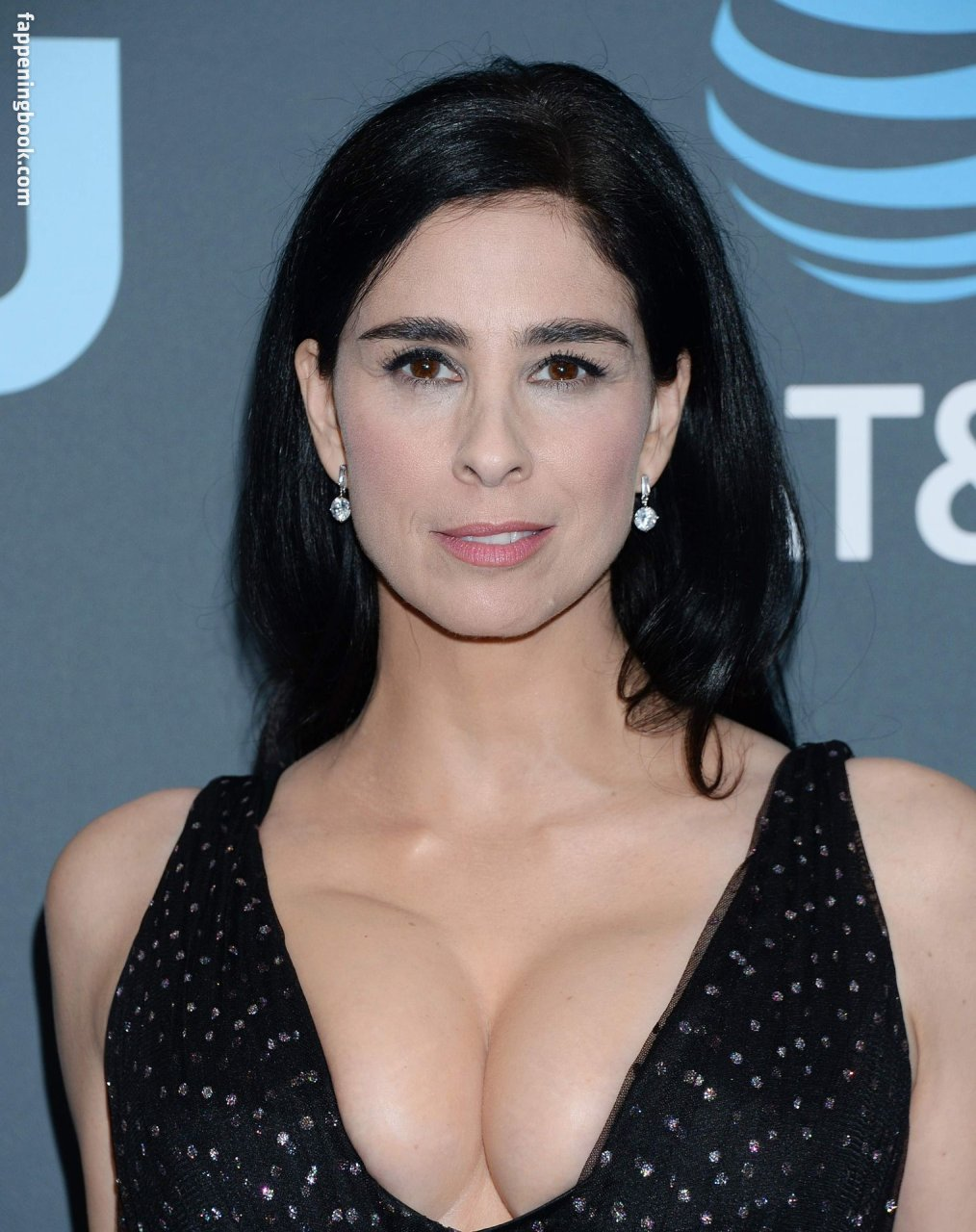 Sex Sarah Silverman Nude Picws Pictures
